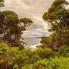 (1610) Eden, New South Wales, Australia