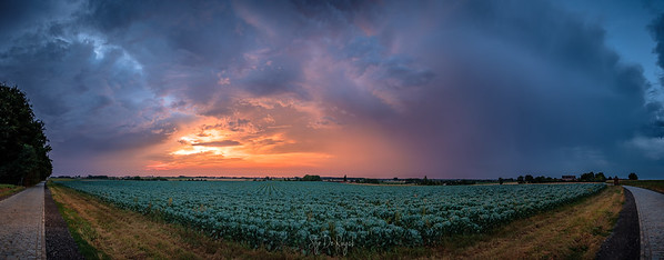 Evening Thunderstorms