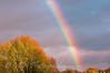 Rainbow over Rooksbury Mill Lake