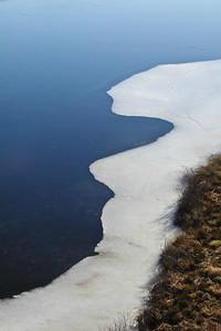 Ice on the Marsh