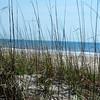 Anastasia Island State Park<br /> <br /> Jacksonville, Florida