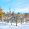 October 2011 snow storm, Morrison Farm, Hill Road, Boxboro, MA