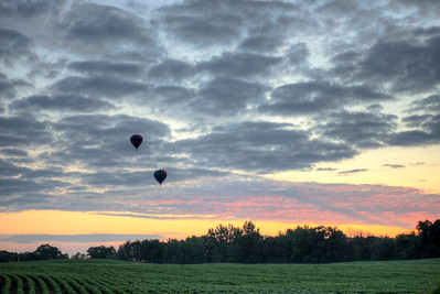 Balloons Over the Soybeans