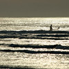 Surfer at Isle of Palms, SC