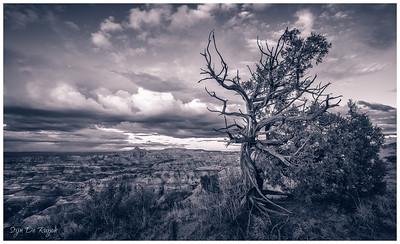 Angel Peak Scenic Area, New Mexico, USA