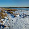 Salt Marsh Nature Center