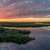 Salt Marsh Nature Center at Sunrise