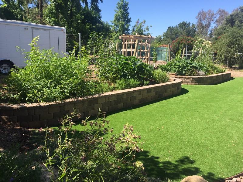 Vegetable garden is going great.