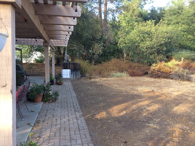 The bricks around the patio slab were sunken and weeds would grow up from the spaces between them continuously. A larger patio would be nice.