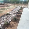 Plants along the patio and creek are planted and hooked up to drip irrigation.