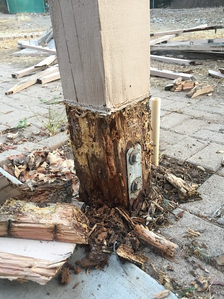 The posts for the old patio cover were completely rotted out. A coat of paint won't help this.