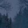 Finnish Lapland.