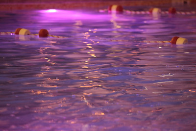 Golden Nugget Pool