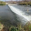 The weir at work slowing the water and helping filter it.