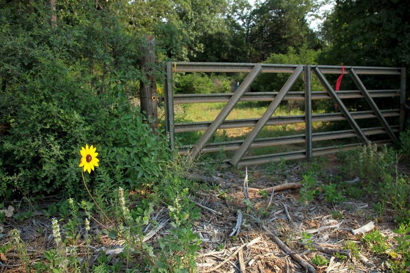 Farm entrance.