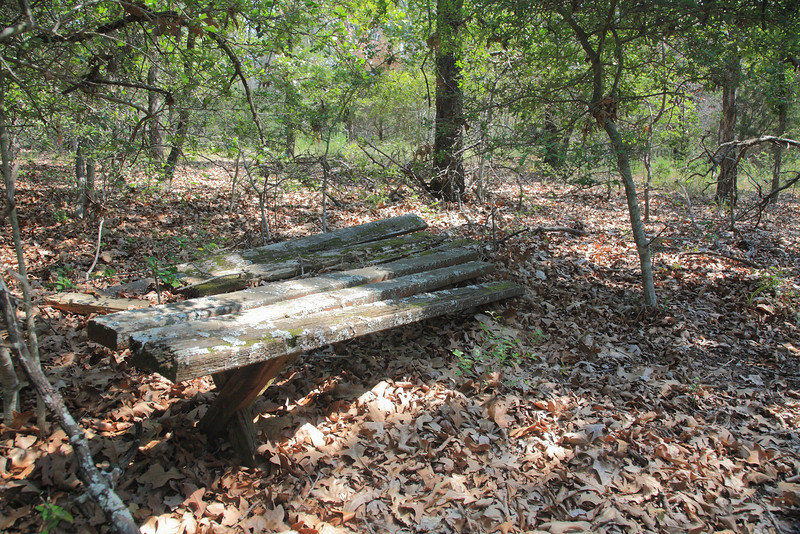 All that's left of the picnic table.