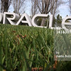 P22.1 / CRM Chapter Opening Photo / Neither Oracle or Salesforce would supply logo or image.<br /> <br /> Choice 2 of 15