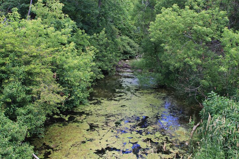 River in MacNaughton Park, Exeter, Ontario