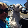 Bails and Mum in Nelson