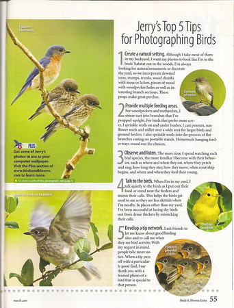 """<div class=""""jaDesc""""> <h4>Birds & Blooms Featured Photographer - Page 55 - March 2009 </h4> <p>I was very fortunate to have been selected as the featured photographer in March 2009 edition of Birds & Blooms EXTRA magazine.  </p> </div>"""