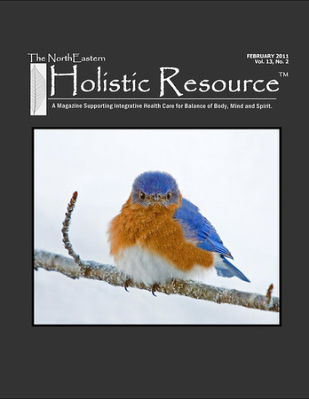 """<div class=""""jaDesc""""> <h4> Holistic Resource Magazine Cover Photo - February 2011 </h4> <p> This photo of a very hungry male Bluebird was taken on a windy 10 degree February morning.  The mealworm feeder was empty and he was not happy with me.</p> </div>"""