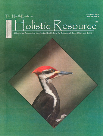 "<div class=""jaDesc""> <h4> Holistic Resource Magazine Cover Photo - August 2012 </h4> <p> First cover photo for this male Pileated Woodpecker close-up shot.</p> </div>"