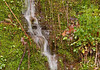 """<div class=""""jaDesc""""> <h4>Hillside Mini-Waterfall - April 29, 2011</h4> <p>This little waterfall was tumbling down a steep rocky hillside. The rock was totally covered with moss except for the path of the streaming water.</p> </div>"""