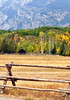 Image #5242.  Lone Barn.  Grand Teton National Park, WY.