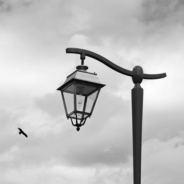 """<p><font size=""""4"""">Les ailes de la clarté </font></p> <p><font size=""""1"""">Wings of light</font></p>"""