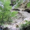 Alum Cave Bluff.
