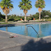 Large swimming pool.