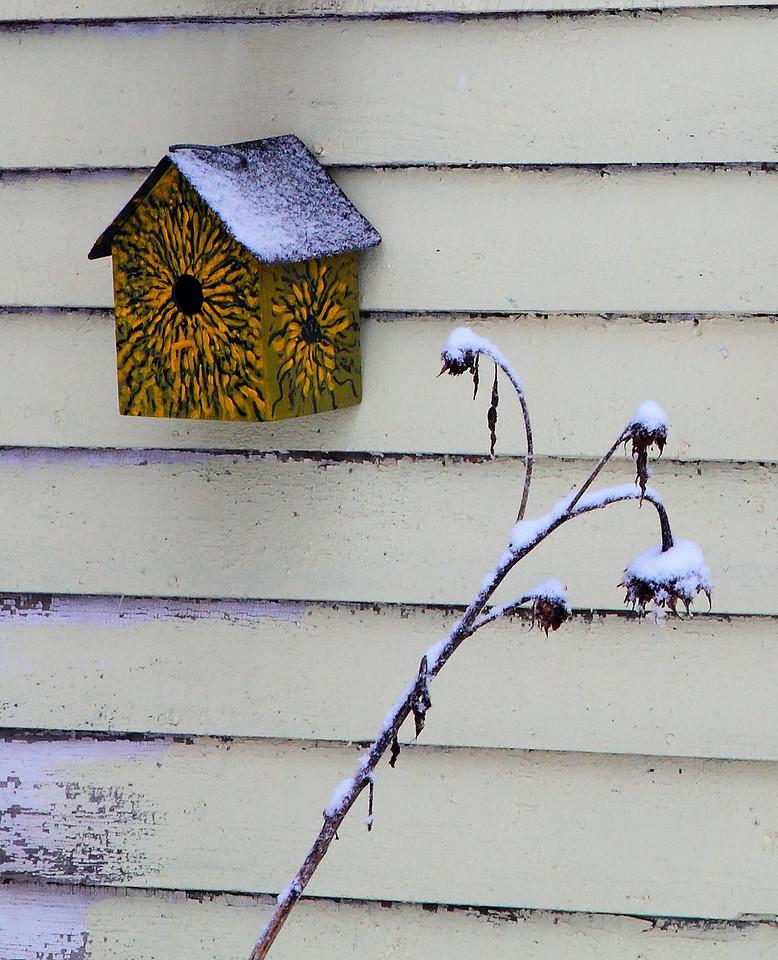 Artistic bird house, Lemont, PA