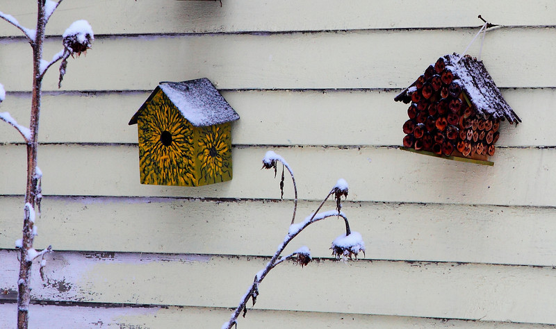 Two artistic birdhouses, Lemont, PA