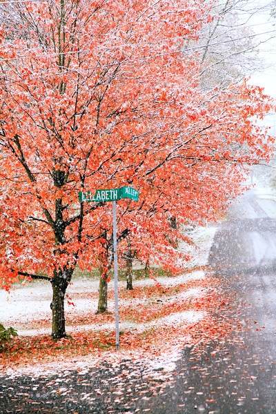 Corner of Elizabeth Alley, October snowstorm, Lemont