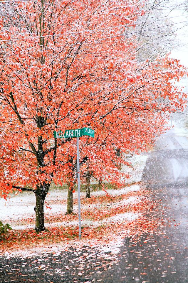 Corner of Elizabeth Alley, October snowstorm, Lemont