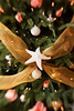 A white starfish or sea star is designed as an ornament on a Christmas tree between a set of gold fabric ribbons. Special lens effect blurs the outside edges of the image.