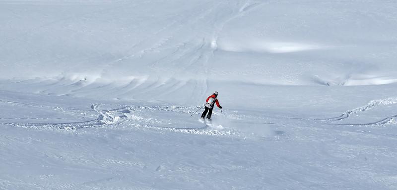 Nendaz, Grepon Blanc :<br />  skier in fresh powder<br /> skieur dans la poudreuse