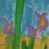 Les iris de Marie Flore