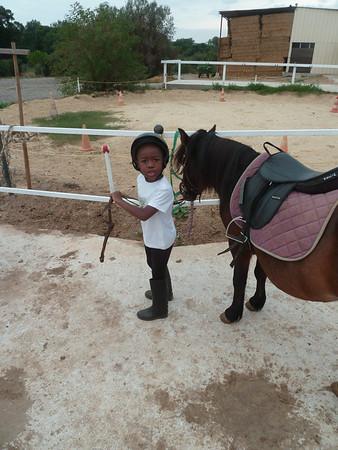 Timothée et le poney