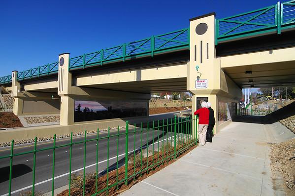 """Let me go under.""  G-Street Underpass, 12/7/2011"