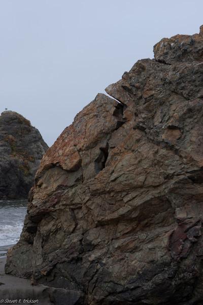 Muir Beach-7385