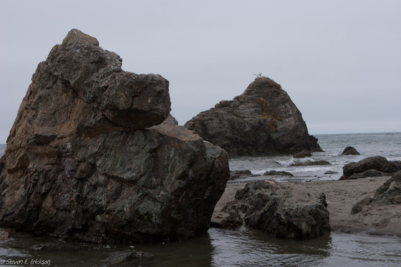 Muir Beach-7389