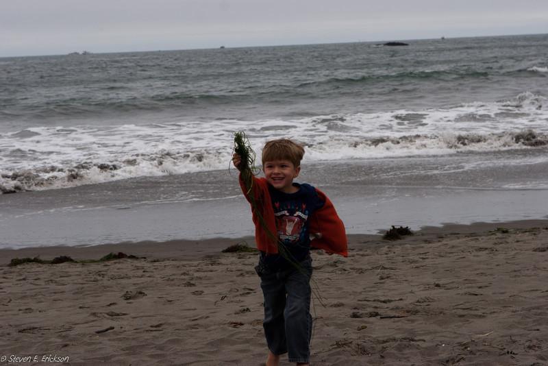 Muir Beach-7381