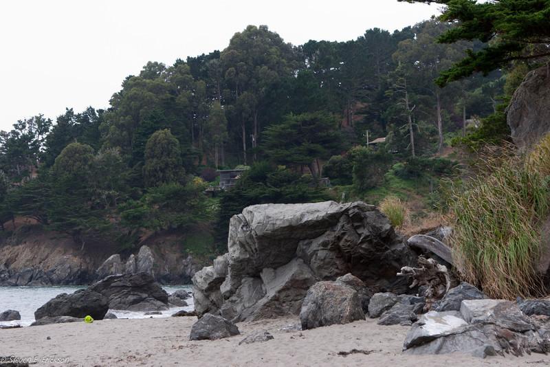 Muir Beach-7387