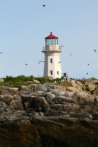 Light House Machias Seal Island, Maine, USA