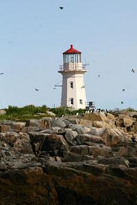 Light House Machias Seal Island, Maine, USA