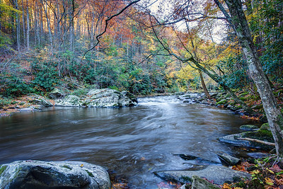 Autumn Little River Tennessee