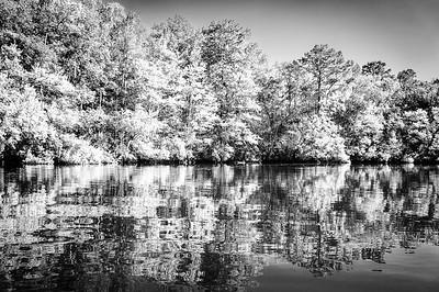 Summer On Rice Creek