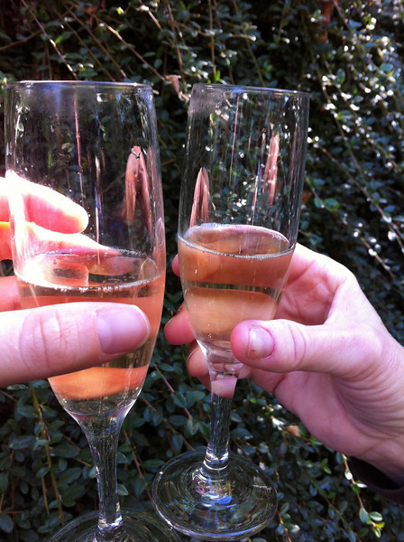 Toasting to a day of wine tasting