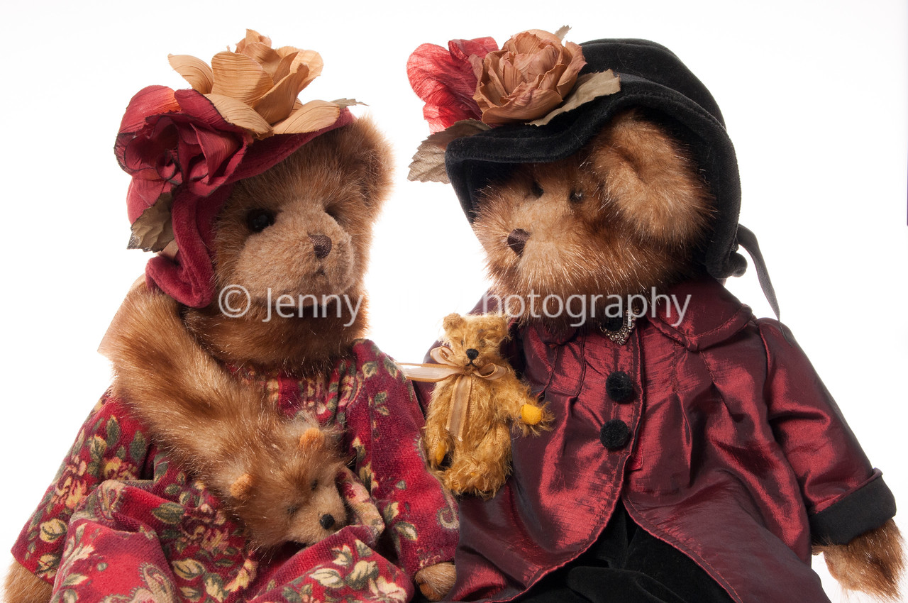 Victorian teddy beas having a chatr isolated on white background